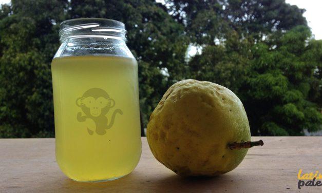 Infusión refrescante de Parchita (Maracuya)