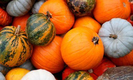 Beneficios de la auyama – calabaza – zapallo